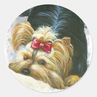 Ojeada de Yorkie pegatinas Yorkshire Terrier de un Pegatina Redonda