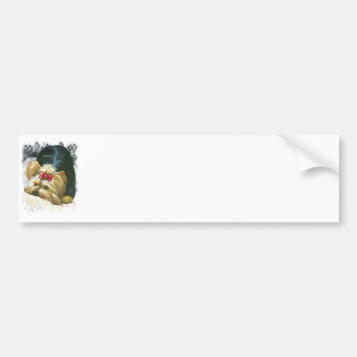 Ojeada de Yorkie una pegatina para el parachoques  Pegatina De Parachoque