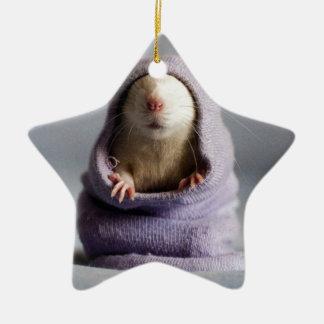 ojeada linda de la rata un abucheo adorno de cerámica en forma de estrella