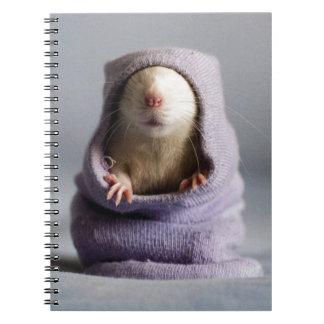ojeada linda de la rata un abucheo libretas
