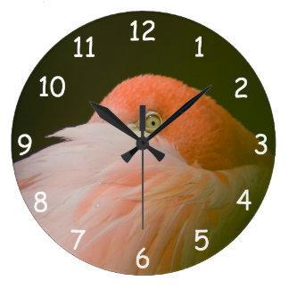 Ojo anaranjado del flamenco reloj redondo grande
