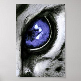 Ojo azul del leopardo póster