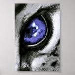 Ojo azul del leopardo posters