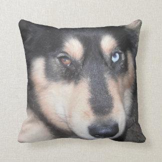Ojo azul del ojo uno de Brown del perro esquimal Almohadas