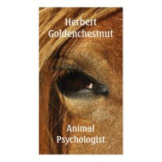 Ojo conmovedor de un caballo tarjetas de visita