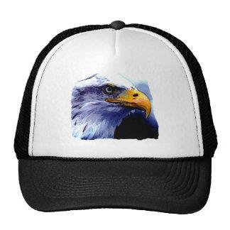 Ojo de Eagle Gorros Bordados
