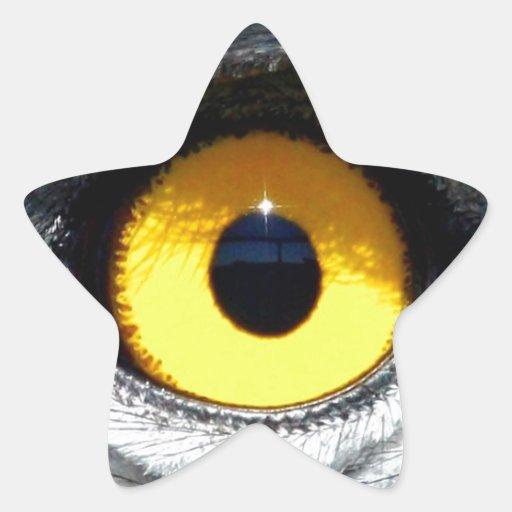 Ojo de Eagle Colcomanias Forma De Estrellaes Personalizadas
