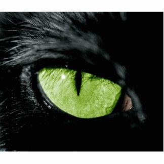 Ojo de gato esculturas fotograficas