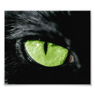Ojo de gato arte con fotos