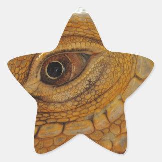 Ojo de la iguana pegatina en forma de estrella