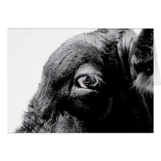 Ojo de la vaca tarjeta de felicitación