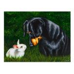 Ojo de Pascua a observar - perro del Dachshund y c Tarjetas Postales