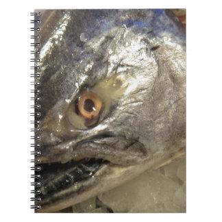 Ojo de pescados libro de apuntes con espiral