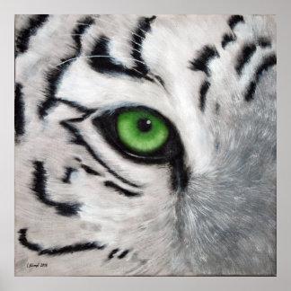 Ojo de tigre póster