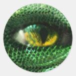 Ojo del a. etiqueta redonda