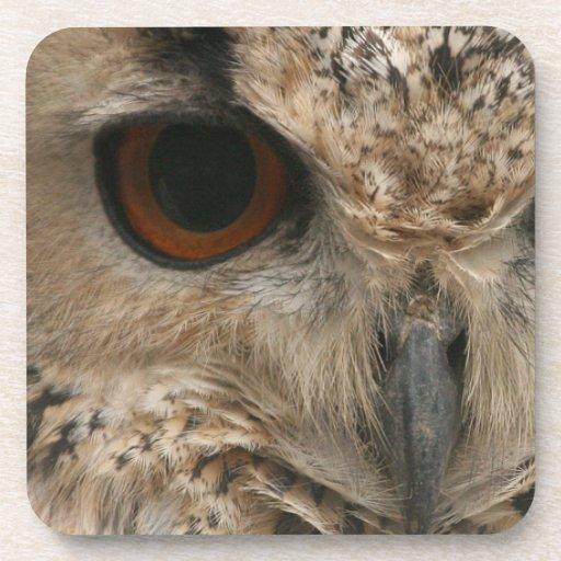 Ojo del búho posavasos