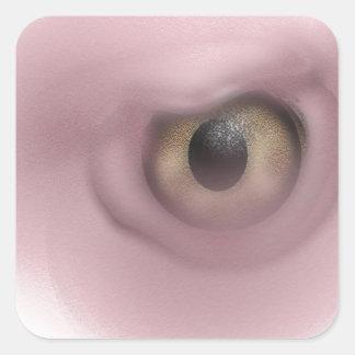 Ojo del buitre calcomanías cuadradass personalizadas