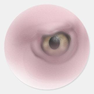 Ojo del buitre pegatina redonda