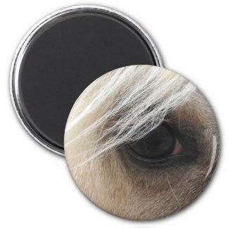 Ojo del caballo del Palomino Imán Redondo 5 Cm