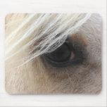 Ojo del caballo del Palomino Tapetes De Ratones