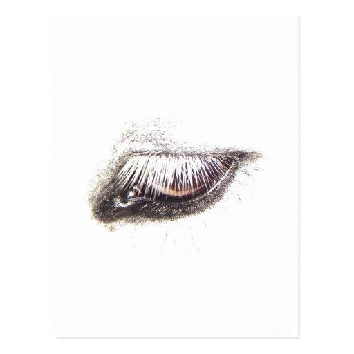 ojo del caballo/del potro postales