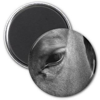 Ojo del caballo iman de nevera