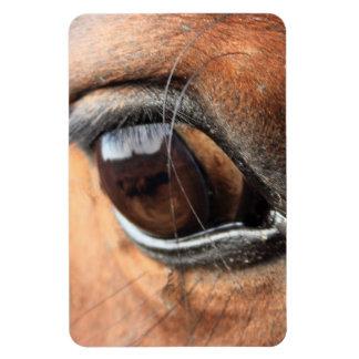 Ojo del caballo iman