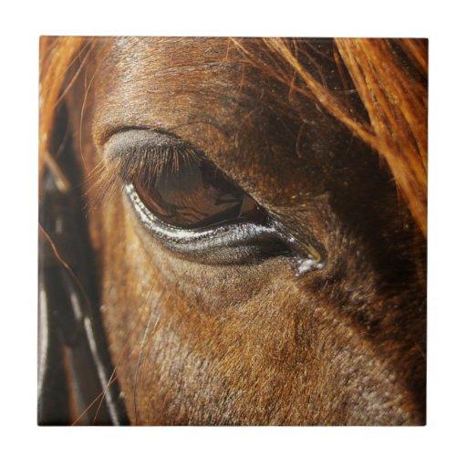 Ojo del caballo teja  ceramica