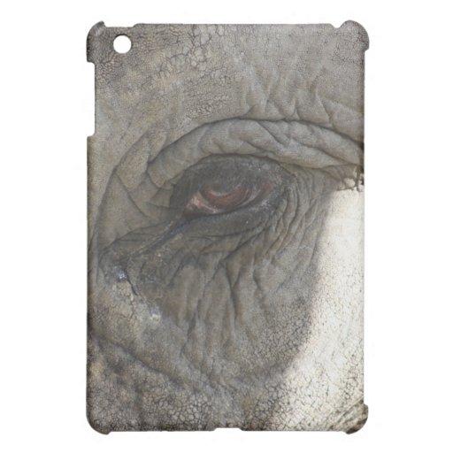 Ojo del elefante