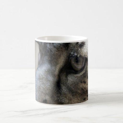 Ojo del gato taza de café