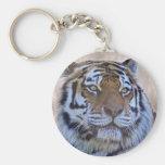 Ojo del llavero del tigre