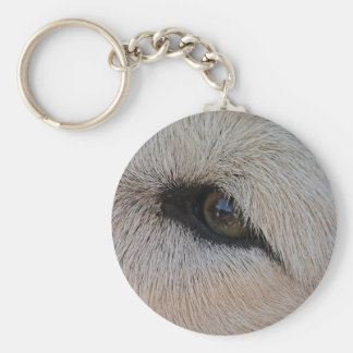 Ojo del lobo llavero redondo tipo pin