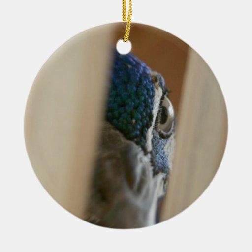 Ojo del pavo real a través de los listones de adorno redondo de cerámica