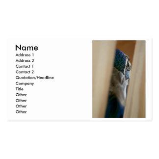 Ojo del pavo real a través de los listones de made tarjeta de visita