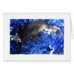 Ojo del perro en malla azul del navidad felicitaciones