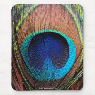 Ojo del primer de la pluma del pavo real tapetes de raton