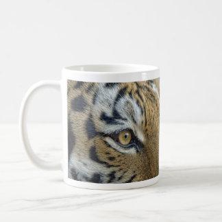 Ojo del tigre de la taza del tigre