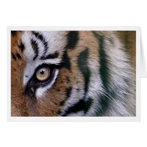 ojo del tigre felicitacion