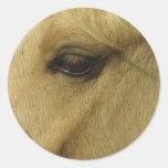 Ojo equino etiquetas redondas