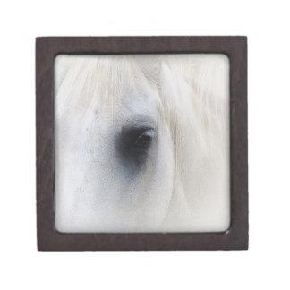 Ojo hermoso del caballo cajas de regalo de calidad