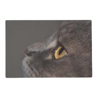Ojo-Macro del gato Salvamanteles