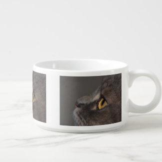 Ojo-Macro del gato Tazón