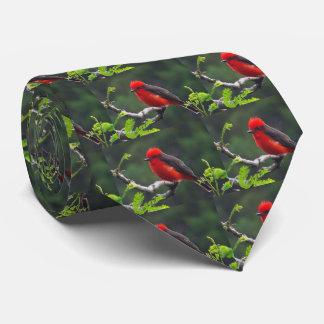 Ojo para observar el lazo de los hombres corbatas