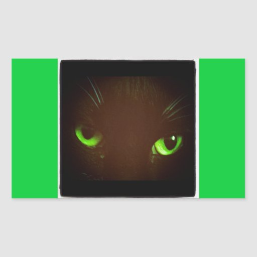 Ojo verde Lucy Pegatina Rectangular