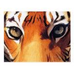 """""""Ojos acuarela de Paul Jackson del tigre"""" Postales"""