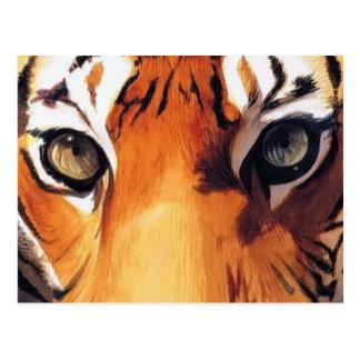 """""""Ojos acuarela de Paul Jackson del tigre"""" Tarjeta Postal"""