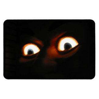 ojos asustadizos iman rectangular