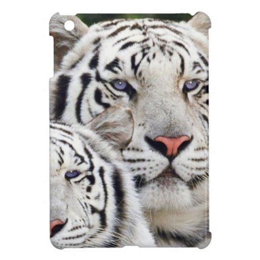 ojos azules de los tigres blancos