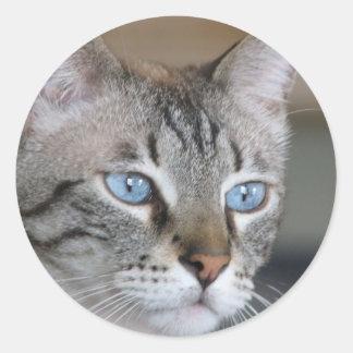 Ojos azules helados pegatina redonda