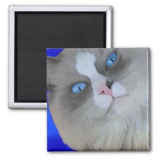 Ojos azules imán cuadrado